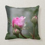 Almohada color de rosa del brote