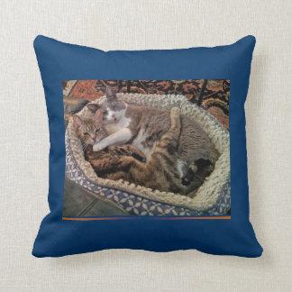 Almohada de abrazo de los gatos