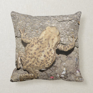 Almohada de arrastre linda del sapo