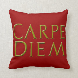 Almohada de Carpe Diem