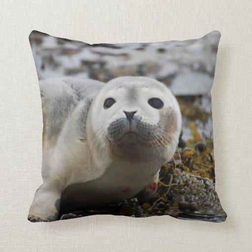 Almohada de cría de foca