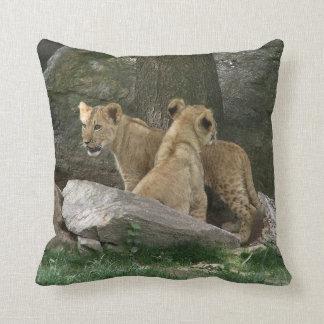 Almohada de exploración de Cubs de león