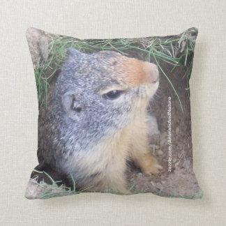 Almohada de Groundhog