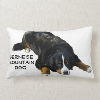 Almohada de la actitud de la manta del perro de cojín lumbar