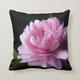 Almohada de la almendra floreciente