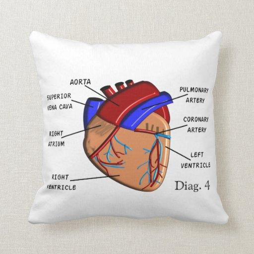 """Almohada de la cardiología """"el corazón"""" Diag. 4"""
