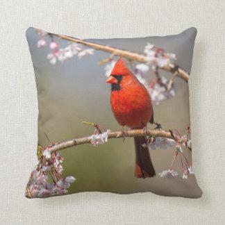Almohada de la foto de los pájaros de la casa