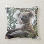Almohada de la koala