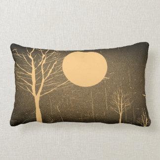 Almohada de la noche de la luna del vintage