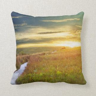 Almohada de la pradera de Konza