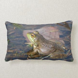 Almohada de la rana