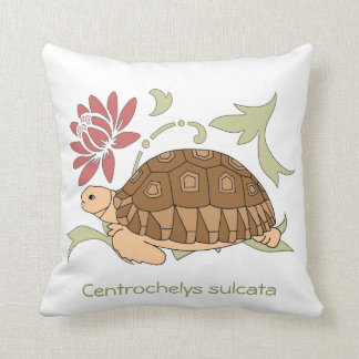 Almohada de la tortuga de Sulcata del bebé