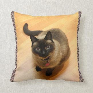 Almohada de los amantes del gato cojín decorativo