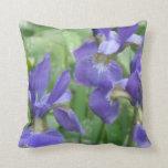 Almohada de los bulbos del iris