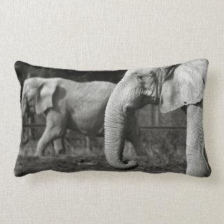 Almohada de los elefantes asiáticos