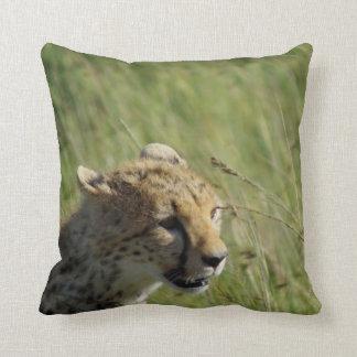 Almohada de Maasai del guepardo de Jason Hui