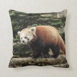Almohada de Mojo del americano de la panda roja