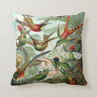 Almohada de MoJo del americano del colibrí