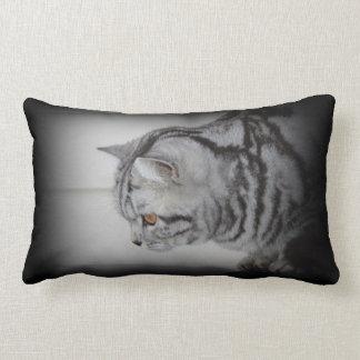 Almohada de plata del gato de tabby