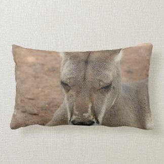 Almohada de reclinación del canguro