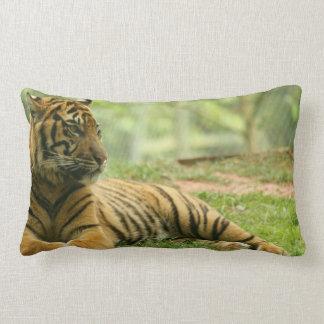 Almohada de reclinación del tigre