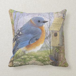 Almohada de tiro azul del este del pájaro