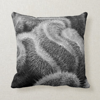 Almohada de tiro blanco y negro borrosa