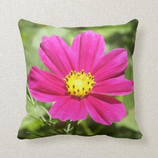 Almohada de tiro de la flor del cosmos de las rosa