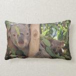 Almohada de tiro de la koala de la mamá y del bebé