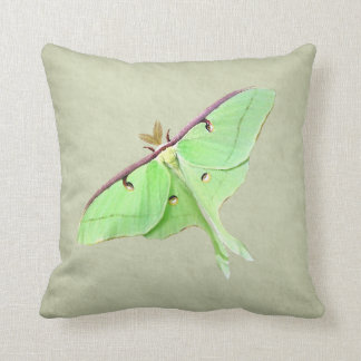 Almohada de tiro de la polilla de Luna Cojín Decorativo
