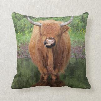 Almohada de tiro de la vaca de la montaña