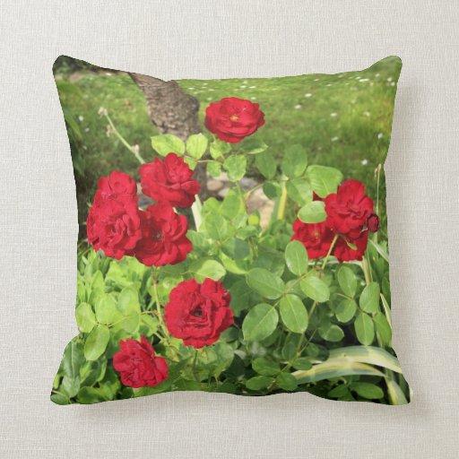 Almohada de tiro de los rosas rojos cojín decorativo