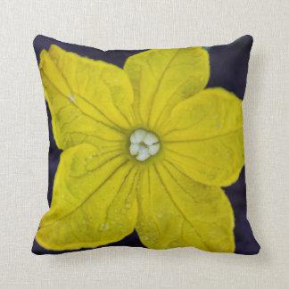 Almohada de tiro del flor del pepino