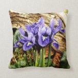Almohada de tiro del iris holandés