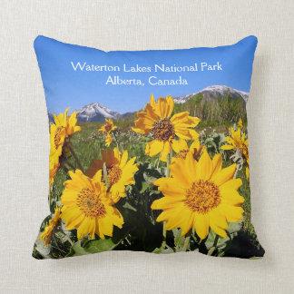 Almohada de tiro del parque nacional de los lagos