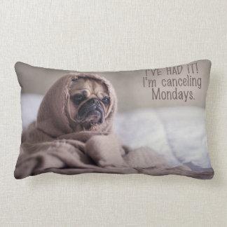 Almohada de tiro divertida del perro