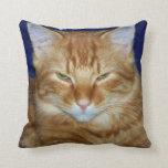 Almohada de tiro gruñona del gato