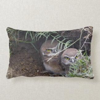 Almohada de tiro joven de los búhos
