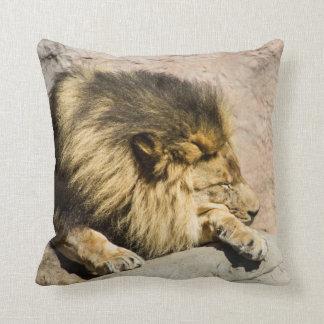 Almohada de tiro perezosa del león