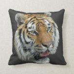 Almohada de tiro principal de la imagen del tigre