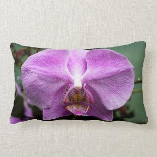 Almohada de tiro púrpura de la orquídea