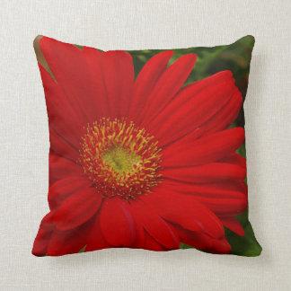 Almohada de tiro roja de la floración del Gerbera Cojín Decorativo