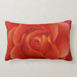 Almohada de tiro roja del rosa rojo