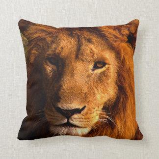 Almohada del acento de la cara del león