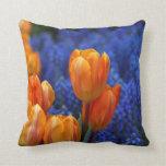 Almohada del acento del tulipán