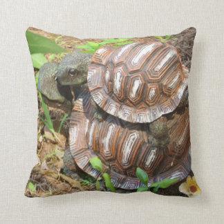 Almohada del amor de dos tortugas