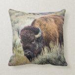 Almohada del bisonte