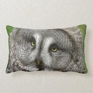 Almohada del búho de gran gris