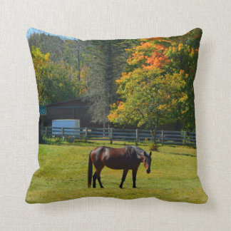 Almohada del caballo