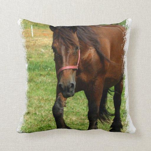Almohada del caballo de proyecto